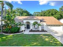 View 12830 Wallingford Dr Tampa FL