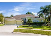 View 10409 Meadow Crossing Dr Tampa FL