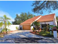 View 11507 Robles Del Rio Pl Temple Terrace FL