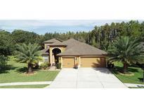 View 4857 Diamonds Palm Loop Wesley Chapel FL