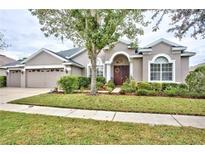 View 6613 Thornton Palms Dr Tampa FL