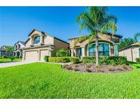 View 2711 Colewood Ln Dover FL