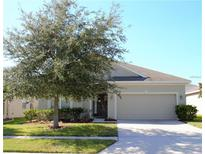 View 7653 Atwood Dr Wesley Chapel FL