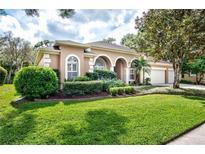 View 7213 Wareham Dr Tampa FL