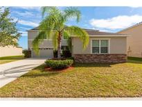 View 13508 Freemark Briar Pl Riverview FL