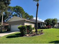 View 6312 Spoonbill Dr New Port Richey FL