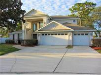 View 8796 Caitlyn Ct Seminole FL