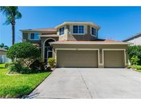 View 1831 Sweetspire Dr Trinity FL