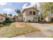View 10322 Fernbrook Ln Tampa FL