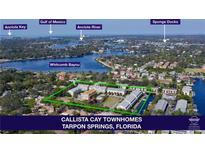 View 807 Callista Cay Loop Tarpon Springs FL