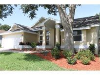 View 1682 Winners Cir Tarpon Springs FL