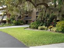 View 1725 Golfview Dr # 1725 Tarpon Springs FL