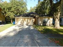 View 9801 Long Meadow Dr Tampa FL