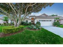 View 3936 Silk Oak Ln Palm Harbor FL