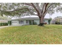 View 806 Audubon St Clearwater FL