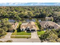 View 3287 Enisgrove Dr E Palm Harbor FL