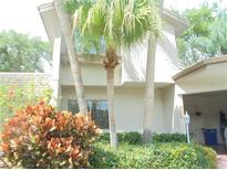 View 2701 Sand Hollow Ct Clearwater FL