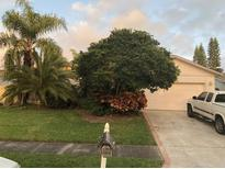 View 2465 Islander Ct Palm Harbor FL