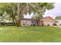 View 9244 80Th Ave Seminole FL