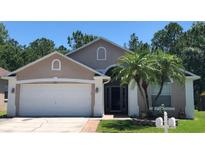 View 14412 Pepperpine Dr Tampa FL