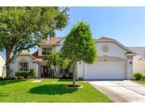 View 4241 Ellinwood Blvd Palm Harbor FL