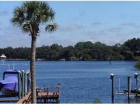 View 1434 Riverside Dr Tarpon Springs FL