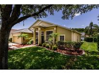 View 4256 Tremblay Way Palm Harbor FL