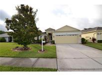 View 1046 Dustan Pl Trinity FL