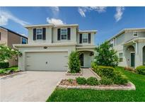 View 19220 Roseate Dr Lutz FL
