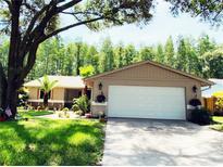 View 5340 Black Pine Dr Tampa FL