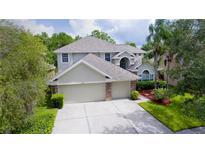 View 11637 Renaissance View Ct Tampa FL