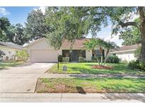 View 1409 Wicklow Dr Palm Harbor FL