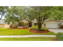 View 426 Winding Willow Dr Palm Harbor FL