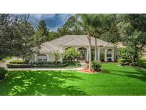 View 5650 Stag Thicket Ln Palm Harbor FL