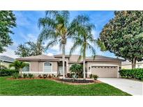 View 5155 Kernwood Ct Palm Harbor FL