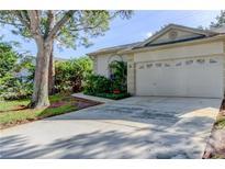 View 3057 Brookfield Ln Clearwater FL