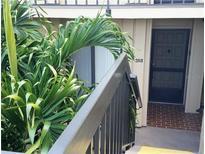 View 6322 Palma Del Mar Blvd S # 203 St Petersburg FL