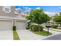 View 7806 66Th Way N Pinellas Park FL
