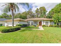View 2512 Appaloosa Trl Palm Harbor FL