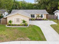 View 10824 116Th St N Seminole FL