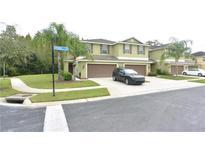 View 8502 Zapota Way Tampa FL