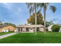 View 3617 Dellefield St New Port Richey FL