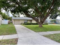 View 11948 Tangelo Ct Seminole FL