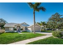 View 1096 Clippers Way Tarpon Springs FL