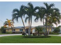 View 1141 42Nd Ave Ne St Petersburg FL