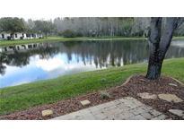 View 1048 Flora Vista St Trinity FL