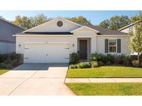 View 9104 Freedom Hill Dr Seffner FL