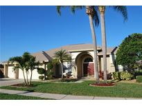 View 798 Belted Kingfisher Dr N Palm Harbor FL