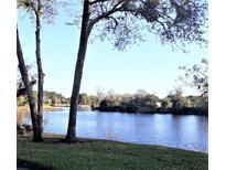 View 21203 Calle Rosa Dr Land O Lakes FL