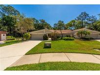 View 3557 Tanglewood Trl Palm Harbor FL